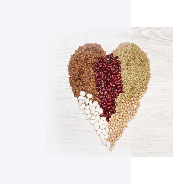 Beneficios que aportan a nuestro cuerpo incorporar las legumbres a nuestra dieta.